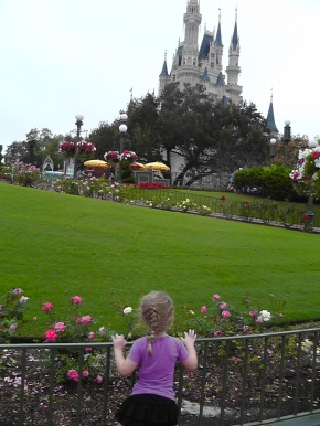 Super Rough Draft – Intro to 3rd Disneybook