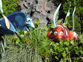 Finding Dory in Walt Disney World